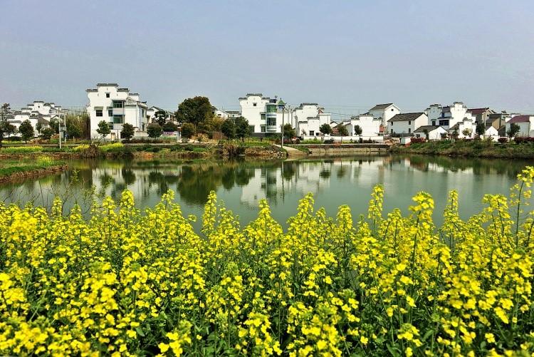 南京超清风景版权