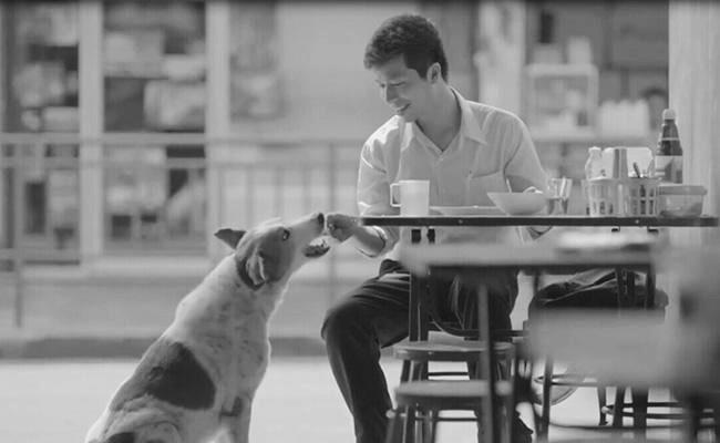"""""""鸡汤,我只喝泰国的""""? 泰国广告,为何总能戳中泪点"""