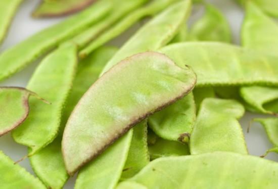 养生警惕:7种有毒蔬菜千万不要吃 当心短命