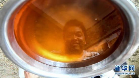(经济)(3)广西凌云:低产油茶改造助农脱贫